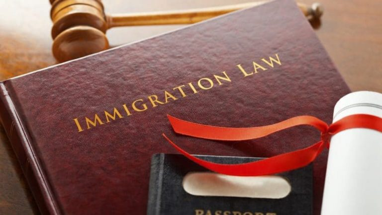Importance of an immigration lawyer